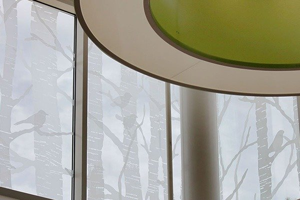 Etched Glass Decorative Frosted Glass By Fgd