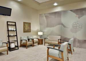 Wellstar Health Parks Glass Film on Glass Wall and Glass Door